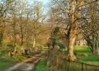 Hartland Abbey tracks