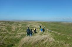 Walkers on Northam Burrows